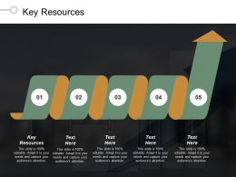 Key Resources Ppt Powerpoint Presentation Gallery Smartart Cpb