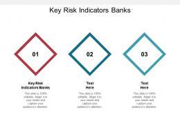 Key Risk Indicators Banks Ppt Powerpoint Presentation Slides Examples Cpb