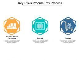 Key Risks Procure Pay Process Ppt Powerpoint Presentation Professional Slide Cpb