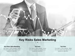 Key Risks Sales Marketing Ppt Powerpoint Presentation Portfolio Background Cpb