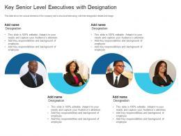 Key Senior Level Executives With Designation Raise Debt Capital Commercial Finance Companies Ppt Grid