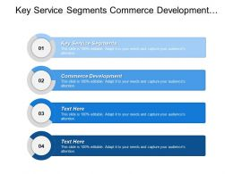 Key Service Segments Commerce Development Works Mobile Devices