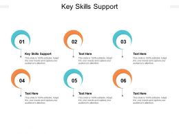 Key Skills Support Ppt Powerpoint Presentation Pictures Microsoft Cpb