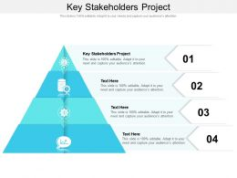 Key Stakeholders Project Ppt Powerpoint Presentation File Graphics Cpb