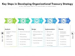 Key Steps In Developing Organizational Treasury Strategy