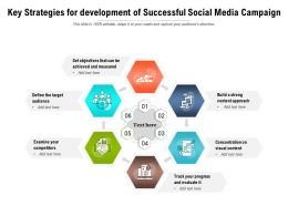Key Strategies For Development Of Successful Social Media Campaign