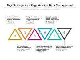 Key Strategies For Organization Data Management