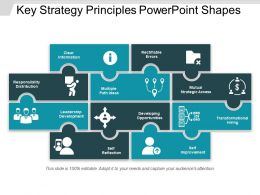 Key Strategy Principles Powerpoint Shapes