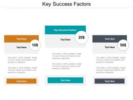 Key Success Factors Ppt Powerpoint Presentation Outline Format Cpb