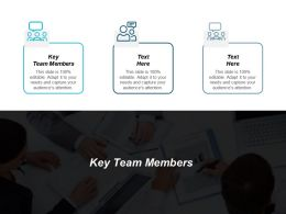 Key Team Members Ppt Powerpoint Presentation Gallery Structure Cpb