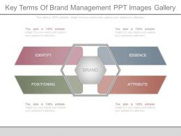 Key Terms Of Brand Management Ppt Images Gallery