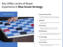 Key Utility Levers Of Buyer Experience In Blue Ocean Strategy