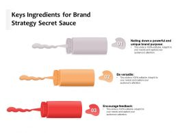 Keys Ingredients For Brand Strategy Secret Sauce
