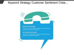 Keyword Strategy Customer Sentiment Crisis Management Plan Business Cpb