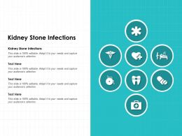 Kidney Stone Infections Ppt Powerpoint Presentation Slide
