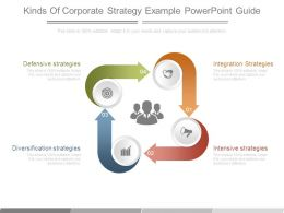 Kinds Of Corporate Strategy Example Powerpoint Guide