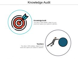 Knowledge Audit Ppt Powerpoint Presentation File Slide Portrait Cpb