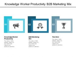 Knowledge Worker Productivity B2b Marketing Mix Market Size Information Cpb