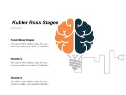 Kubler Ross Stages Ppt Powerpoint Presentation Infographics Rules Cpb