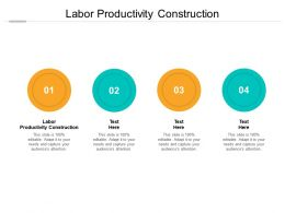 Labor Productivity Construction Ppt Powerpoint Presentation Styles Graphic Tips Cpb
