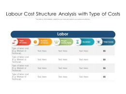 Labour Cost Structure Analysis With Type Of Costs