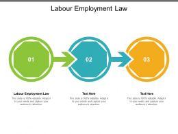 Labour Employment Law Ppt Powerpoint Presentation Ideas Graphics Cpb