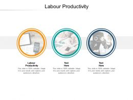 Labour Productivity Ppt Powerpoint Presentation Infographics Themes Cpb