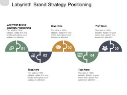 Labyrinth Brand Strategy Positioning Ppt Powerpoint Presentation File Backgrounds Cpb