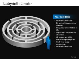 Labyrinth Circular Powerpoint Presentation Slides DB
