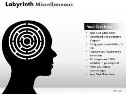 Labyrinth Misc1 ppt 1