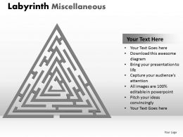 Labyrinth Misc1 ppt 2