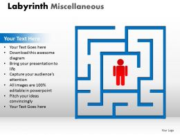 Labyrinth Misc1 ppt 3