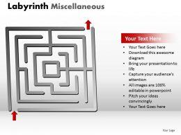 labyrinth_misc1_ppt_4_Slide01
