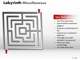 Labyrinth Misc1 ppt 4