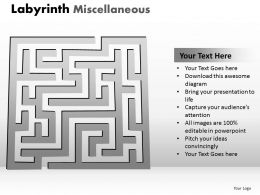 Labyrinth Misc1 ppt 5