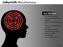 labyrinth_misc_ppt_1_Slide01