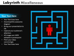 Labyrinth Misc ppt 3