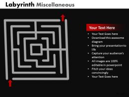 Labyrinth Misc ppt 4