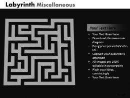 Labyrinth Misc ppt 5