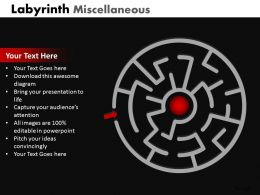Labyrinth Misc ppt 6