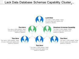 Lack Data Database Schemas Capability Cluster Controller Cluster Information