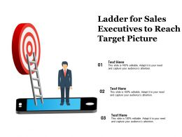 Ladder For Sales Executives To Reach Target Picture