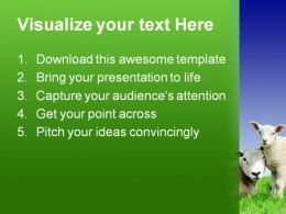 Lamb Animals PowerPoint Template 0910  Presentation Themes and Graphics Slide02