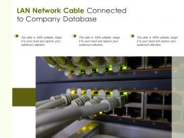 LAN Network Cable Connected To Company Database