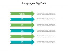 Languages Big Data Ppt Powerpoint Presentation Pictures Example Cpb