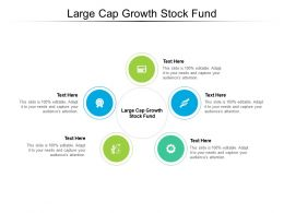 Large Cap Growth Stock Fund Ppt Powerpoint Presentation Slides Template Cpb