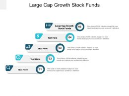 Large Cap Growth Stock Funds Ppt Powerpoint Presentation Gallery Infographics Cpb