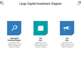 Large Capital Investment Diagram Ppt Powerpoint Presentation Ideas Images Cpb