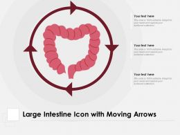 Large Intestine Icon With Moving Arrows