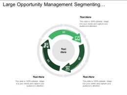 Large Opportunity Management Segmenting Targeting Positioning Opportunity Development